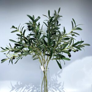 GL11 Long leaves with olives (pre-order)