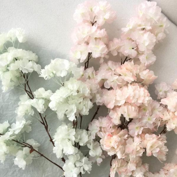 LM06 Long Sakura