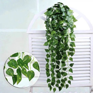 Hanging green radish leaves (90cm)-HG19