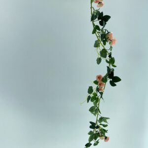 RF05 Rattan rose 23