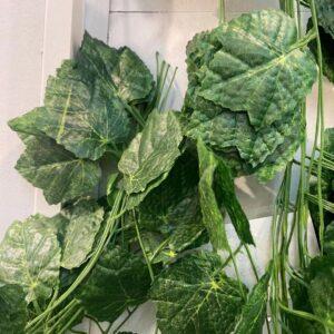 RG06Rattan 40 leaves