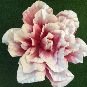 LS22 double layers rose 60cm