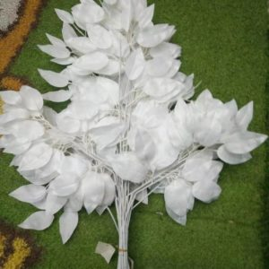 HG21  banyan leaves white