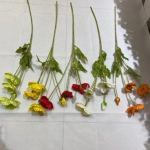 LS34: Poppy