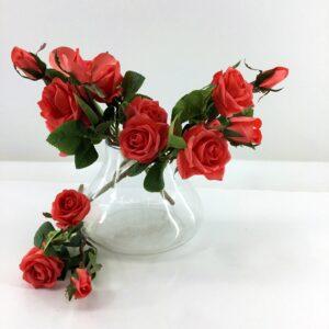 LM27: Moisturizing rose 3