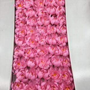 ZF07 Flower head- chrysanthemum